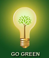 go%2520green1 full Tampa Florida Community Focuses on Energy Efficiency
