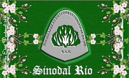 SINODAL RIO BLOGGEANDO