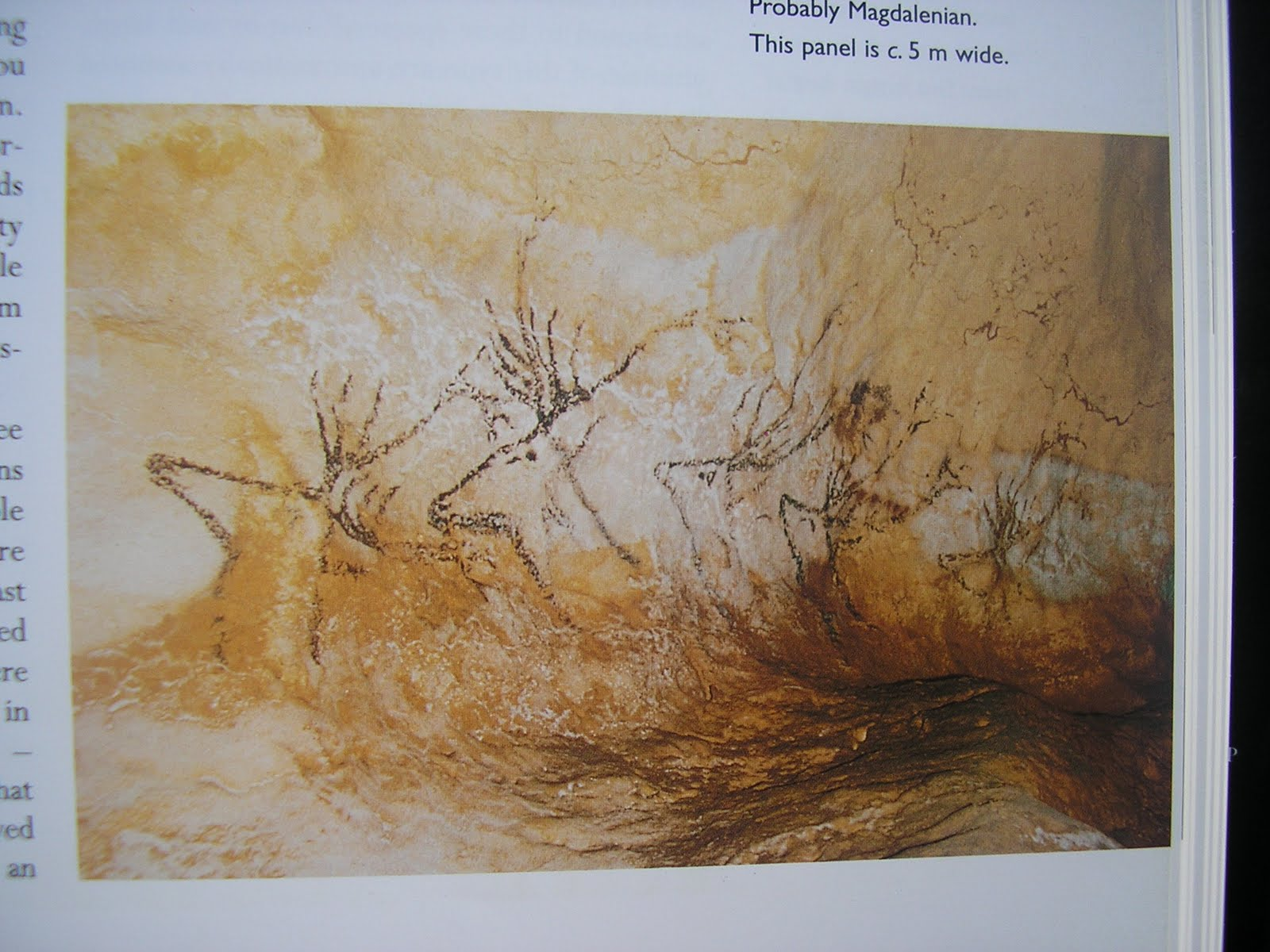 the lascaux cave essay Paris for many, the lascaux caves are the honey pot for what became artistic in the western tradition facebook twitter instagram newsletter essays what the essays what the lascaux caves facsimiles fail to capture joseph nechvatal august 7, 2015 share tweet email popular.