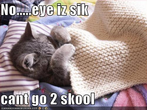 lol cat sick