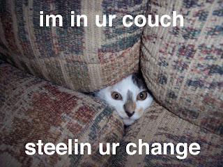 funny cat-3