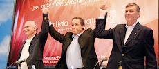 Se desarrollaron las internas del Partido Socialista 2010
