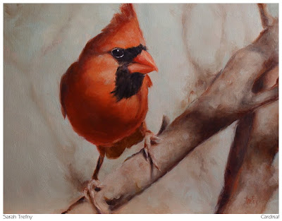 wildlife oil painting of a male Cardinal red bird by Sarah Trefny