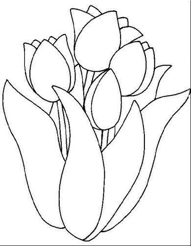 tulipas para colorir tulipas para colorir