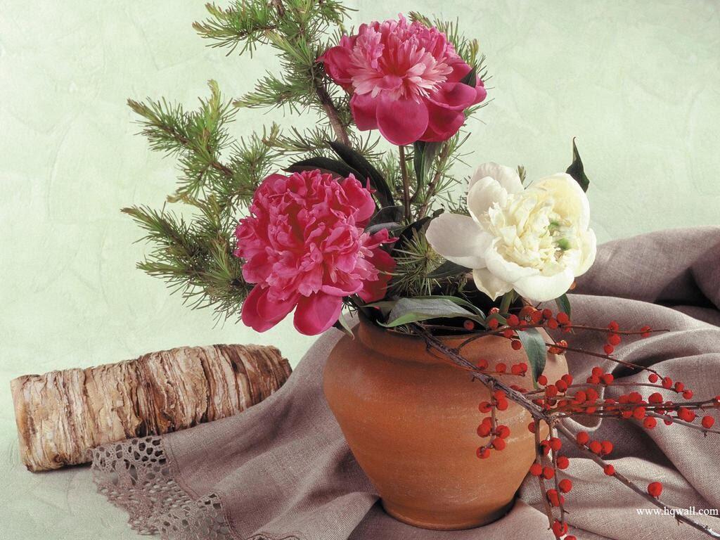 Shabby Silvia Deco Romántica Buenos Aires Decoración  - Imagenes Romanticas Con Flores
