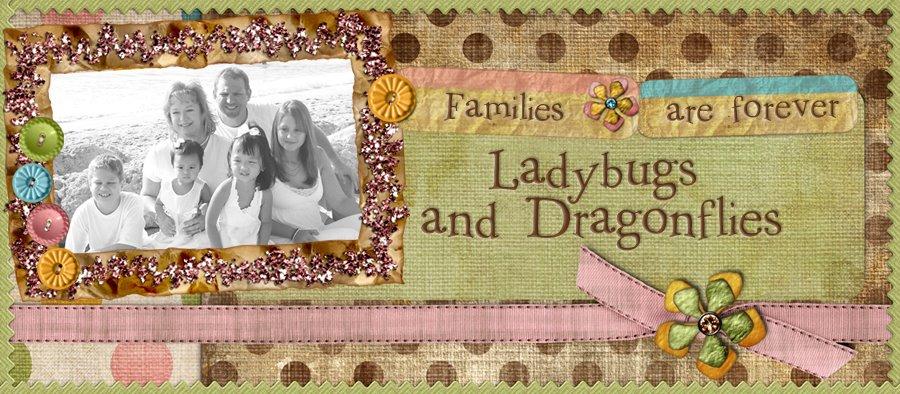 Ladybugs & Dragonflies