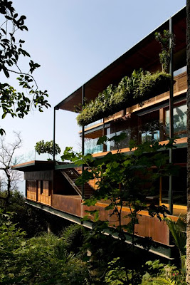 House In The Canopy Of Trees