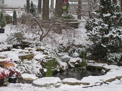 Homewood Nursery in winter snow