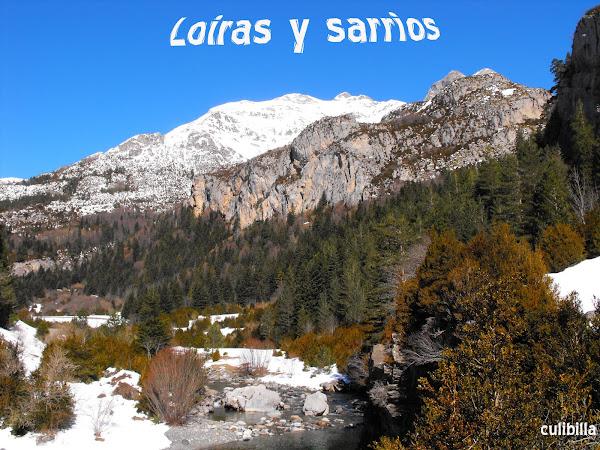 Loiras y sarrios
