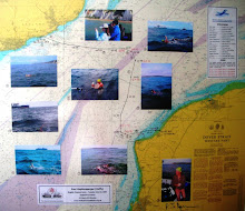 Chart showing Hoffy's 32 mile (52KM) swim across The English Channel on Tuesday July 10. 2007