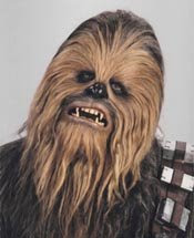 Chewbacca - my muse