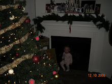 Tailey in the Fireplace.....Why??