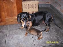 Morocha y su bebe