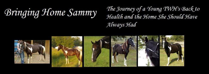 Bringing Home Sammy