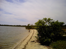 Reserva ambiental em Maricá - RJ