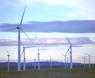 Wind, where the US is now global leader, attracted the highest new worldwide investment, $51.8bn, followed by solar at $33.5bn.