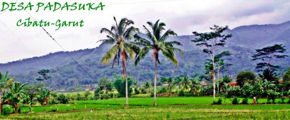 Desa Padasuka