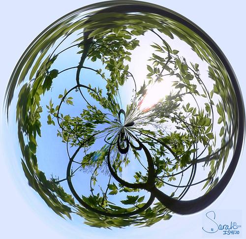 external image reflective.jpg