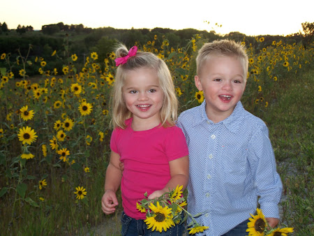 Sunflower Photo Shoot!