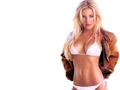 Hollywood WideScreen Wallpaper 1024x768 Elisha Cuthbert Sexy Bikini Picture