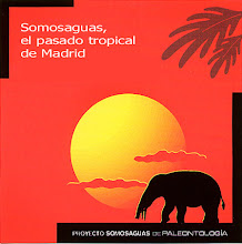 Proyecto Somosaguas de Paleontología