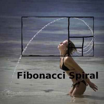 fibonacci spirali