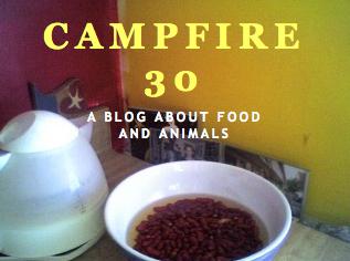 Campfire 30