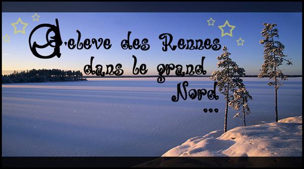 J'élève des Rennes dans le Grand Nord