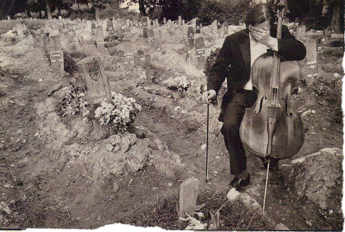 the cellist of sarajevo Review: the cellist of sarajevo by steven gallowaysteven galloway's novel set in bosnia mixes real and imagined characters.