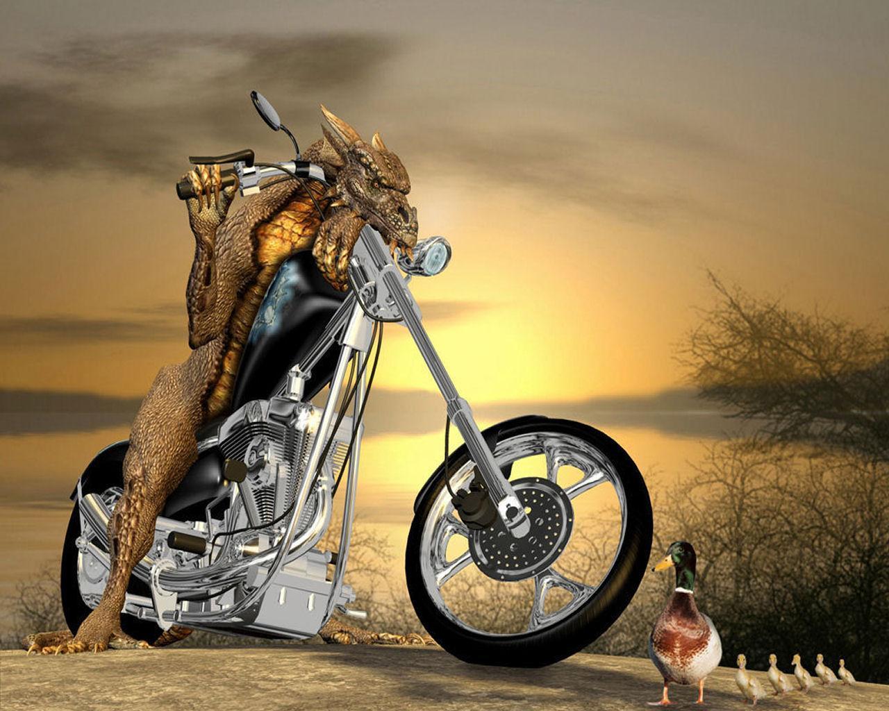 http://1.bp.blogspot.com/_e5a1u7zq5io/TT0bfbquciI/AAAAAAAAAN8/HKdBeumZNgk/s1600/Funny%20Wallpapers%20for%20desktop%20(3).jpg