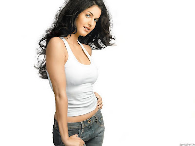 Hot-Katrina-Kaif-Wallpapers-For-Desktop-31