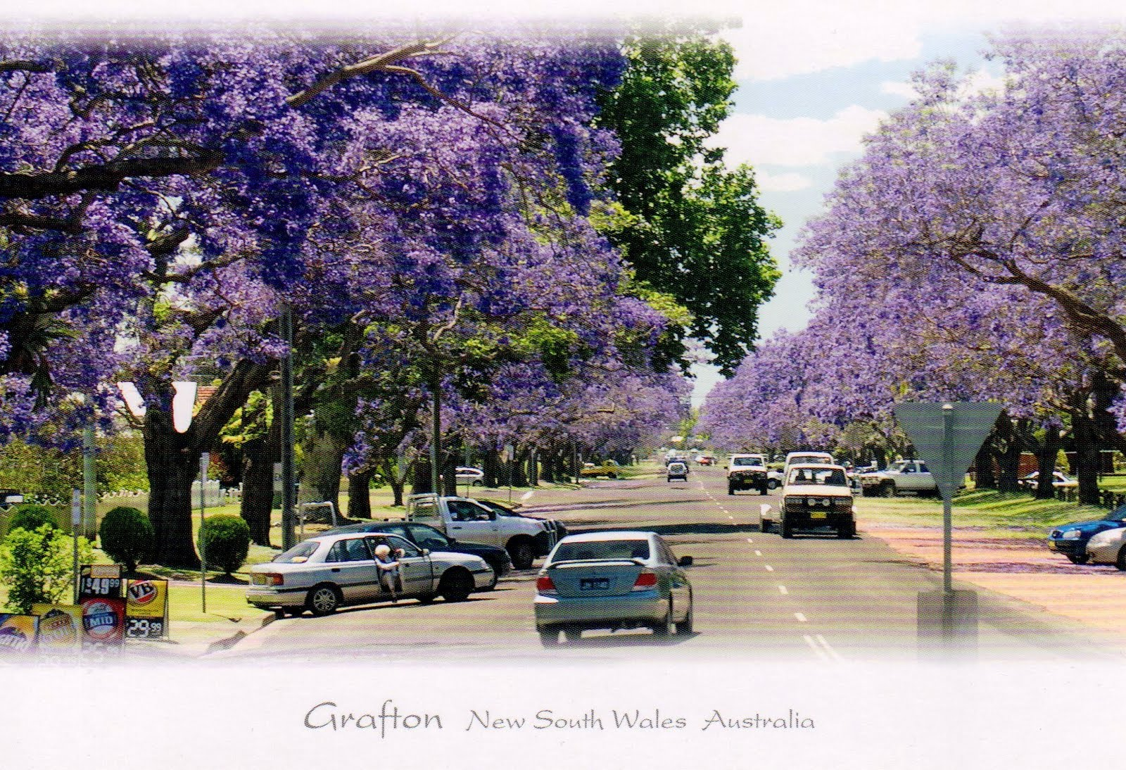 Grafton Australia  city images : Gallivantour: Grafton NSW