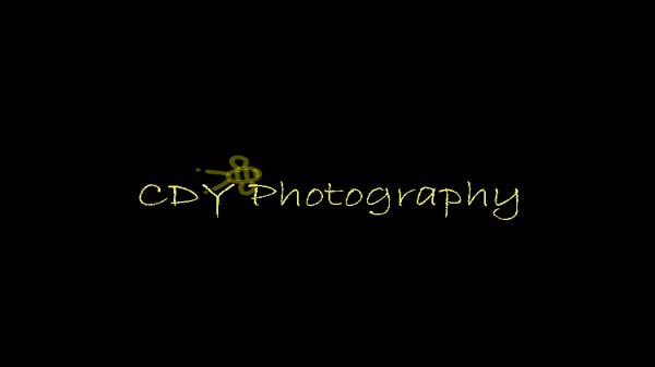 CDY Photography