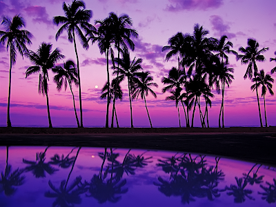 hawaii beach wallpaper. wallpaper beach sunset.