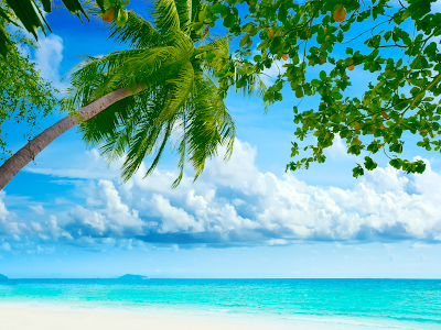 tropical beach wallpaper hd. tropical beaches wallpaper. a