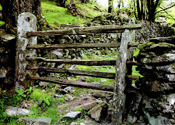 Cumbria Farm Gate