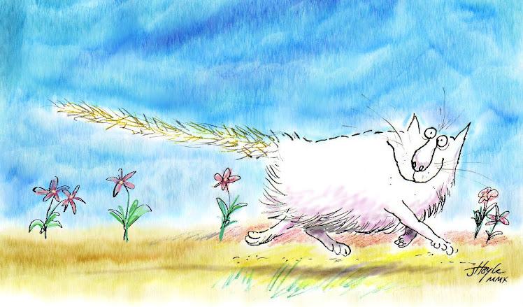Long Catstail