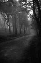 Nevoeiro em Sintra