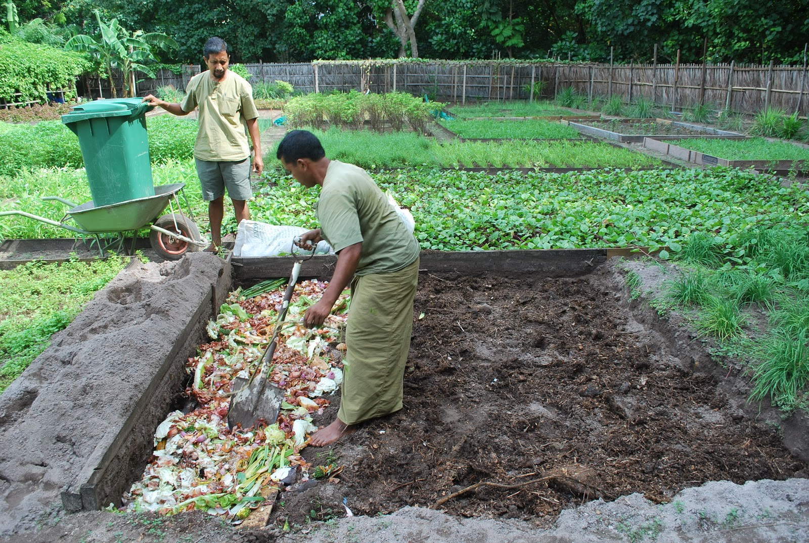 Permaculture maldives care for the earth growing soil for Garden soil layers