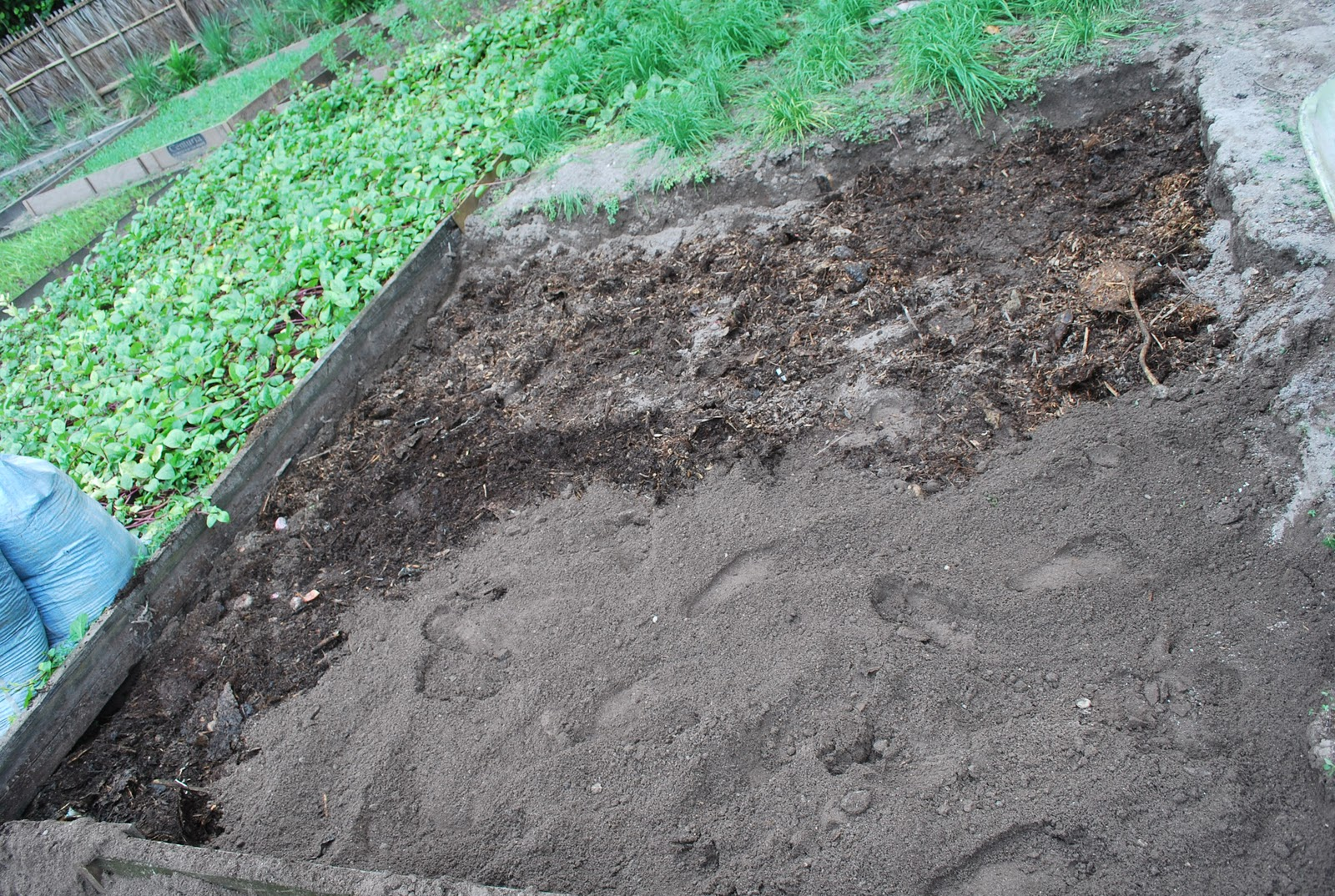 Permaculture maldives care for the earth growing soil for Earth or soil