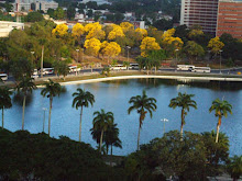 A lagoa no centro do Parque Sólon de Lucena visto do alto.