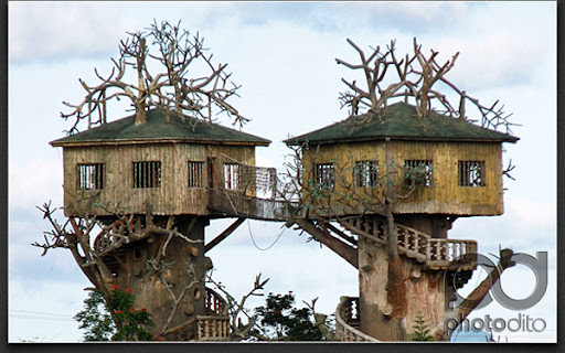 Fantasy World Tree house