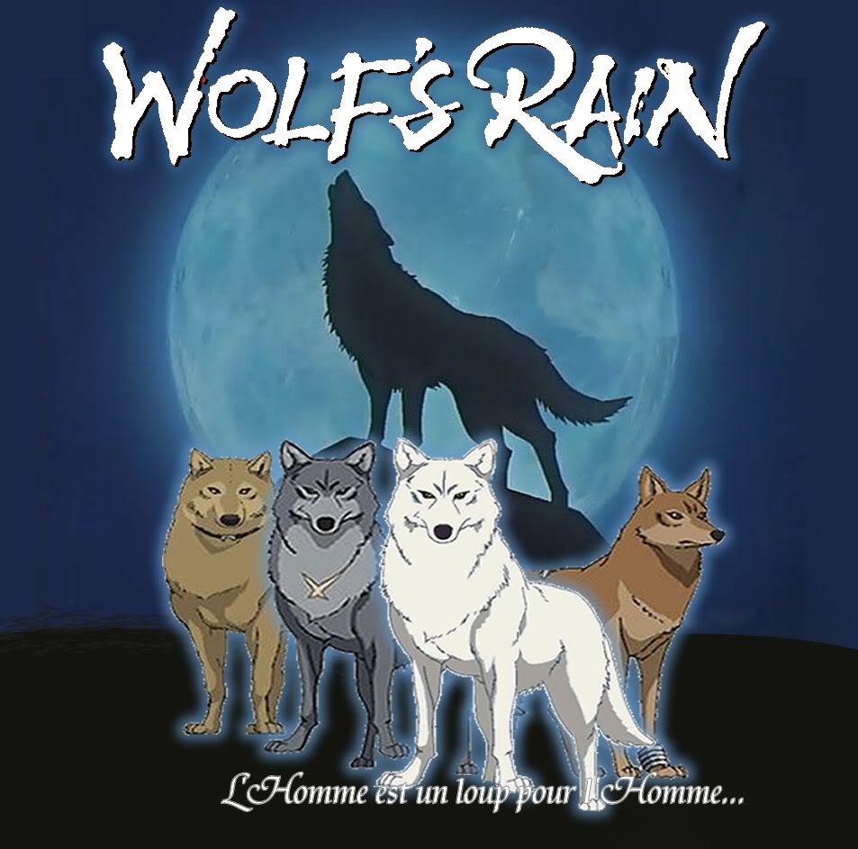 of wolfs bared teeth