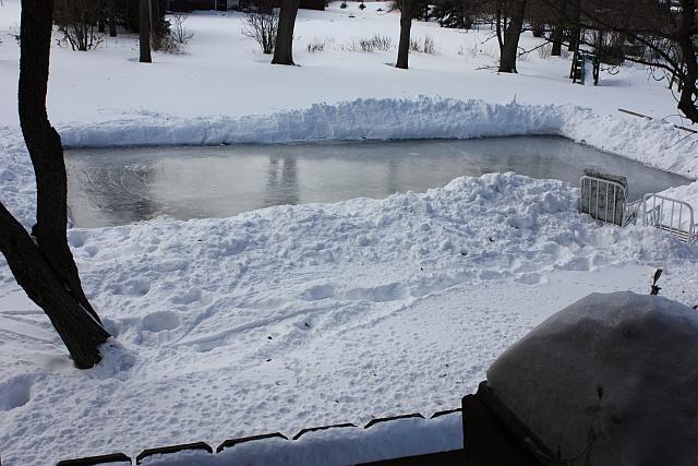 mutiny in the garden backyard ice rink