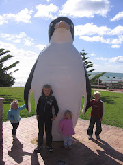 One of Many Penguins in the town of Penguin TAS