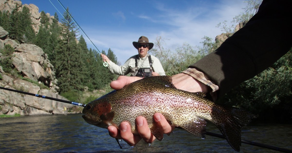 The fly fishing mind of jeff allen on the river 11 mile for 11 mile canyon fishing