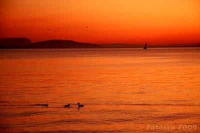 Lausanne, coucher de soleil sur le lac Léman