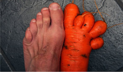 cenoura em formato de pé