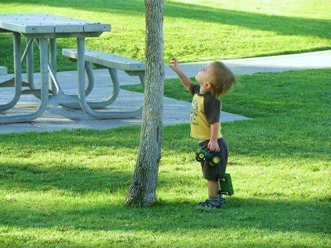 Baby Boy Ventura