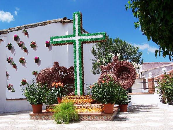 Cruz de Mayo en Los Panchez